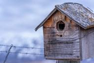 木制棕木鸟屋图片