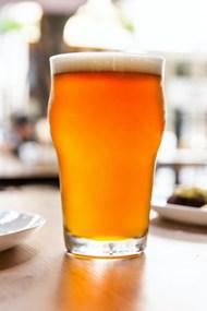 一大杯啤酒图片下载