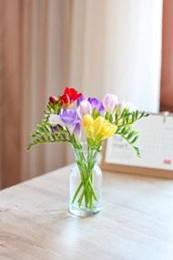 插着花的玻璃花瓶图片素材