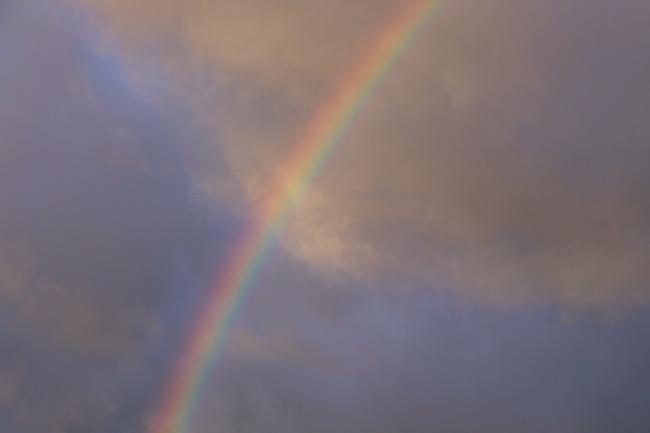 雨后天空彩虹图片大全