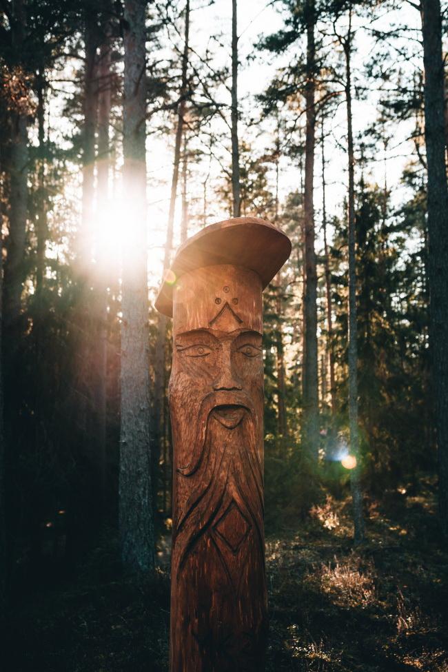 树木木雕图片
