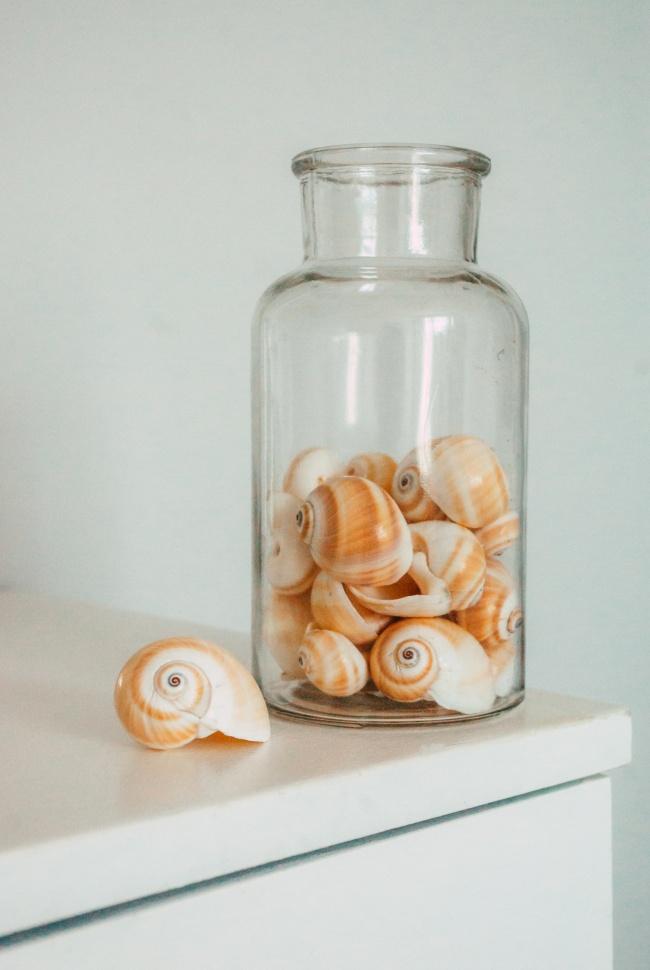 玻璃罐中的贝壳高清图片