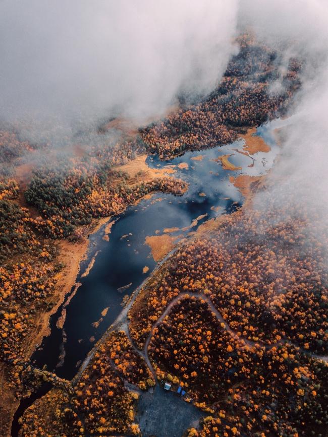 唯美秋季树林湖泊鸟瞰图高清图片