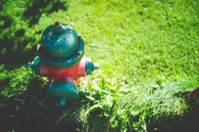 草地上的消防栓高清图片