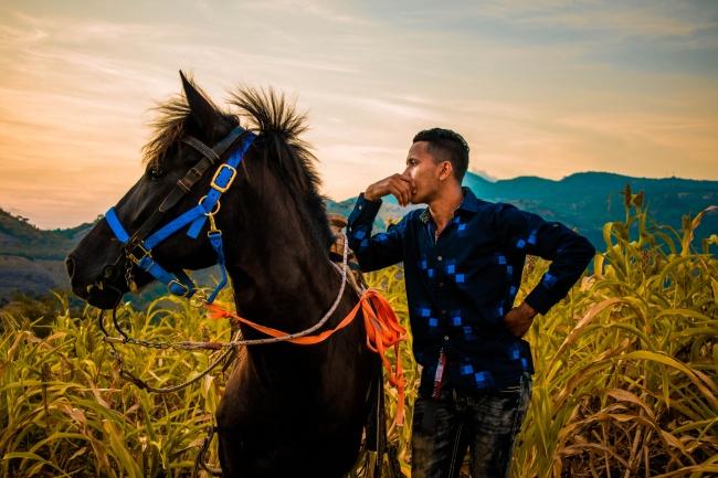 骏马和帅哥图片