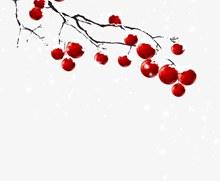 冬天树枝装饰psd免费下载