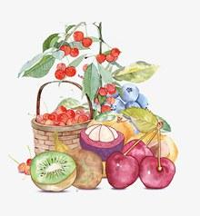 水彩水果psd分层素材