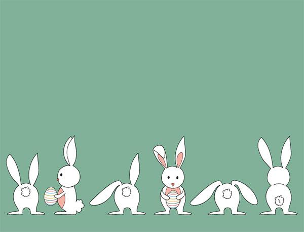 可爱白色小兔矢量图片