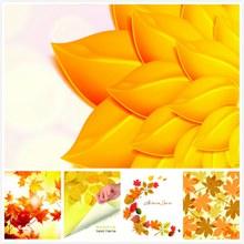 秋天泛黄树叶背景主题集V4矢量图