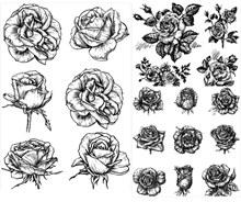 精美单色手绘花朵矢量素材