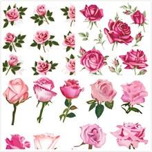 玫瑰花矢量图片