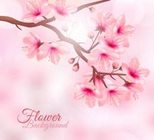 创意阳光下的粉色花枝矢量