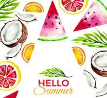 彩绘美味夏季水果矢量下载