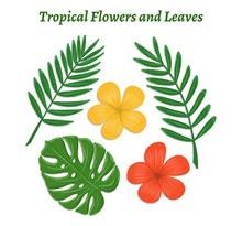 5款创意热带花卉和叶子图矢量素材