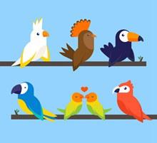 6款彩色树枝上的鸟类矢量下载