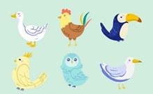6款创意鸟类矢量