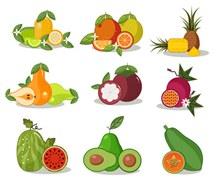 9组彩色水果设计矢量