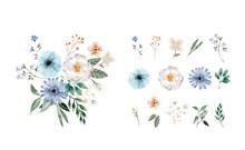 彩绘花朵和组合花束矢量素材