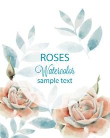 水彩玫瑰和叶背景图矢量图片