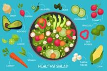 健康饮食食谱矢量图下载