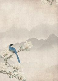 中国风简约花鸟背景