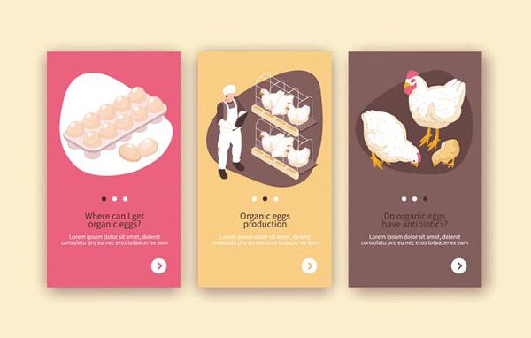 鸡养殖横幅矢量模板