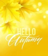 秋天黄色枫叶海报矢量素材下载