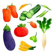手绘蔬菜矢量图下载