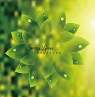 春天绿叶背景矢量图片