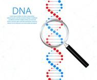 DNA链基因科技矢量下载