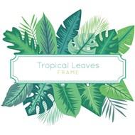 热带植物框架矢量素材下载