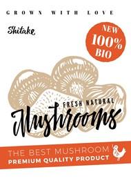 蘑菇美食海报矢量图下载