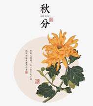 秋分中国风菊花矢量模板