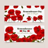 纪念日红色花卉横幅矢量图下载